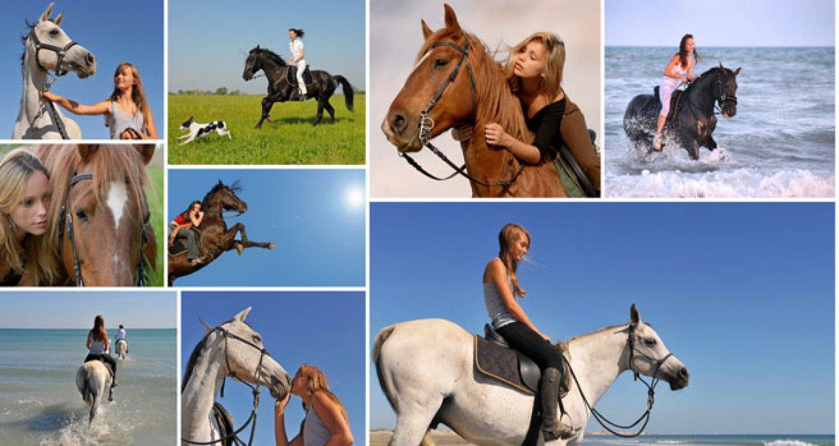 Увлекательная прогулка на лошадях