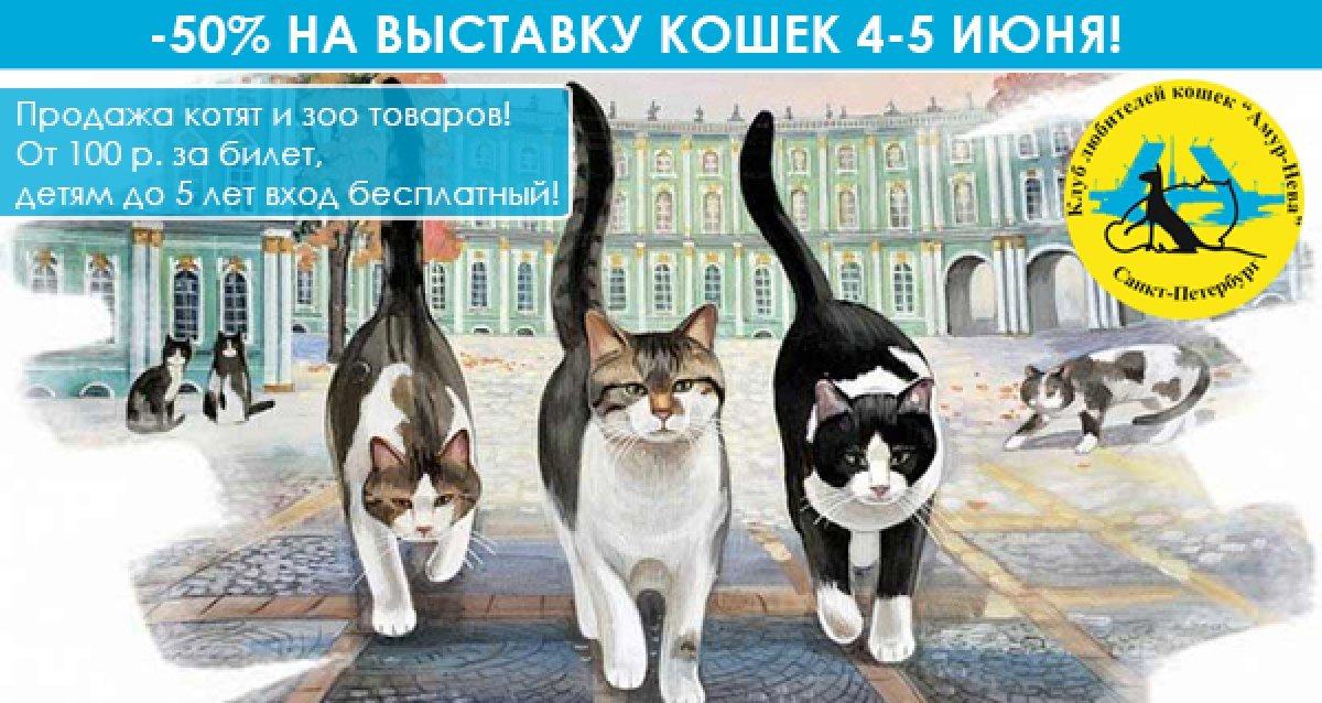 Всемирный день петербургского кота! -50% на выставку кошек 4-5 июня. От 100 р. за билет