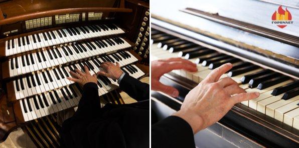 -50% на инструментальные и органные концерты