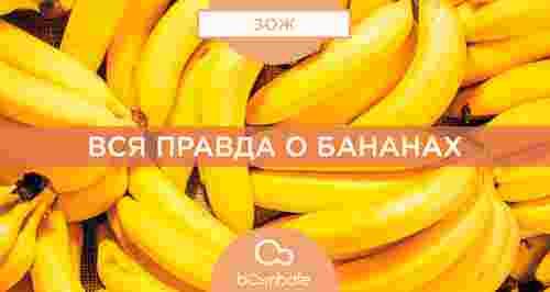 Вся правда о бананах