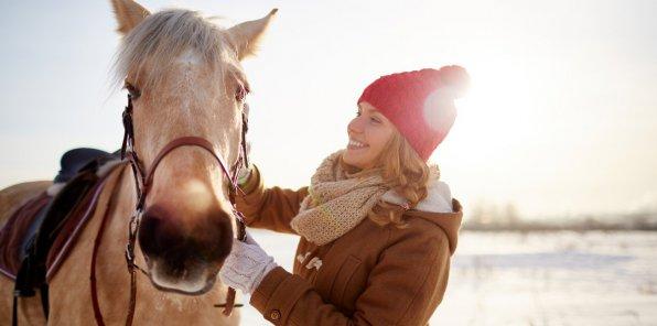 До -50% на катание на санях, прогулки на лошадях или пони