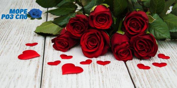 Скидки до 75% на цветы от магазина «Море роз СПБ»