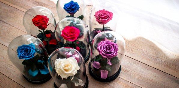Скидки до 60% от магазина цветов «Чудо VIP»