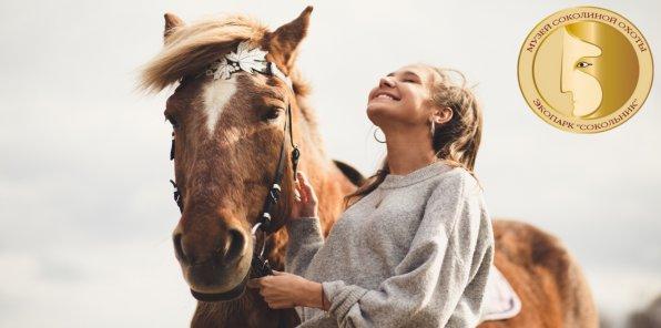Скидка 61% на конную прогулку + чаепитие