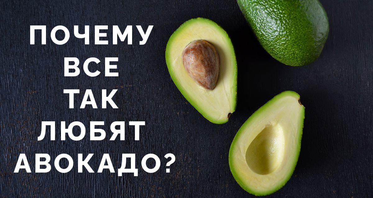 Почему все так любят авокадо?