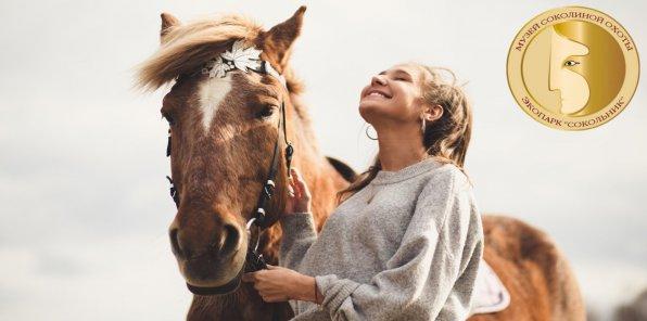 Скидка 61% на конную прогулку