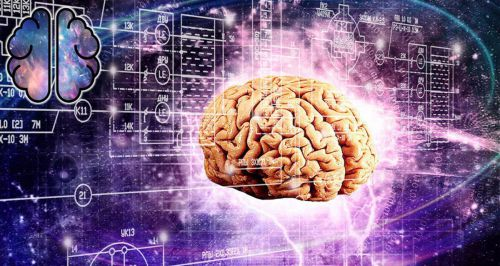 Скидки до 51% на выставку «Мозг: Вселенная внутри нас»