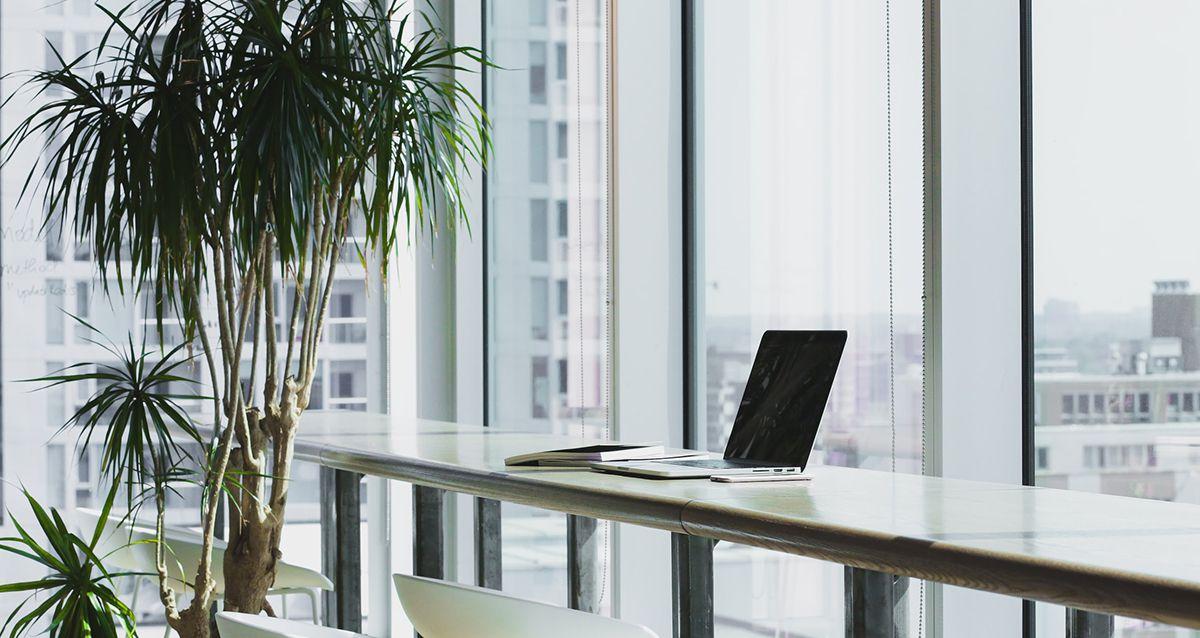 Фитнес в офисе: простые упражнения