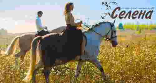 Скидки до 50% на прогулки на лошадях