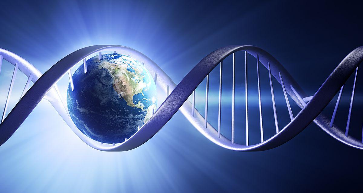 Странные предпочтения, которые заложены в генах