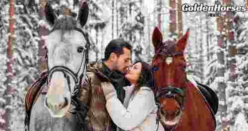 Скидки до 50% на конные прогулки в КСК Golden Horses