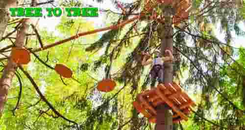 Скидки до 51% от веревочного парка TreeToTree