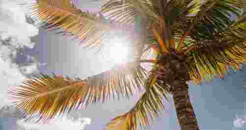 Солнечный удар: знай врага в лицо