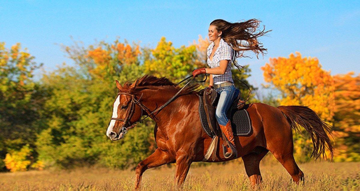 Станьте ближе к природе! Всего 1500 р. за 3-х часовую конную программу или часовую прогулку в конном экипаже